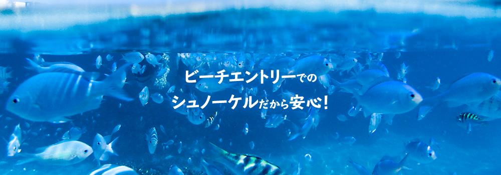 石垣島人気No.1映えスポット幻の島へ