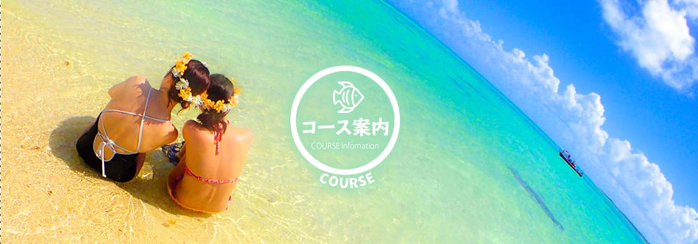 石垣島シュノーケルツアー一覧