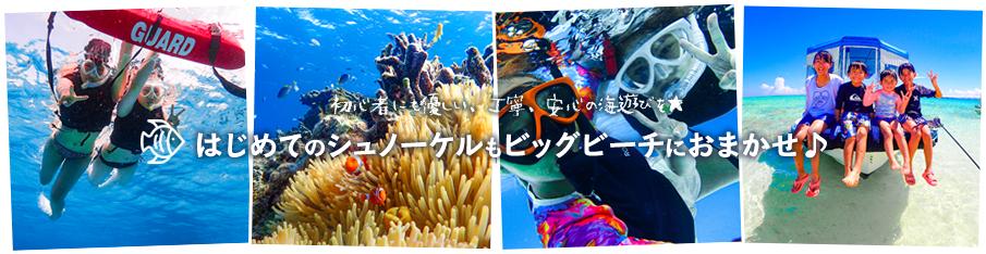 はじめての石垣島シュノーケル初心者歓迎