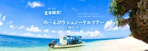 夏季限定!の~んびりシュノーケルツアー